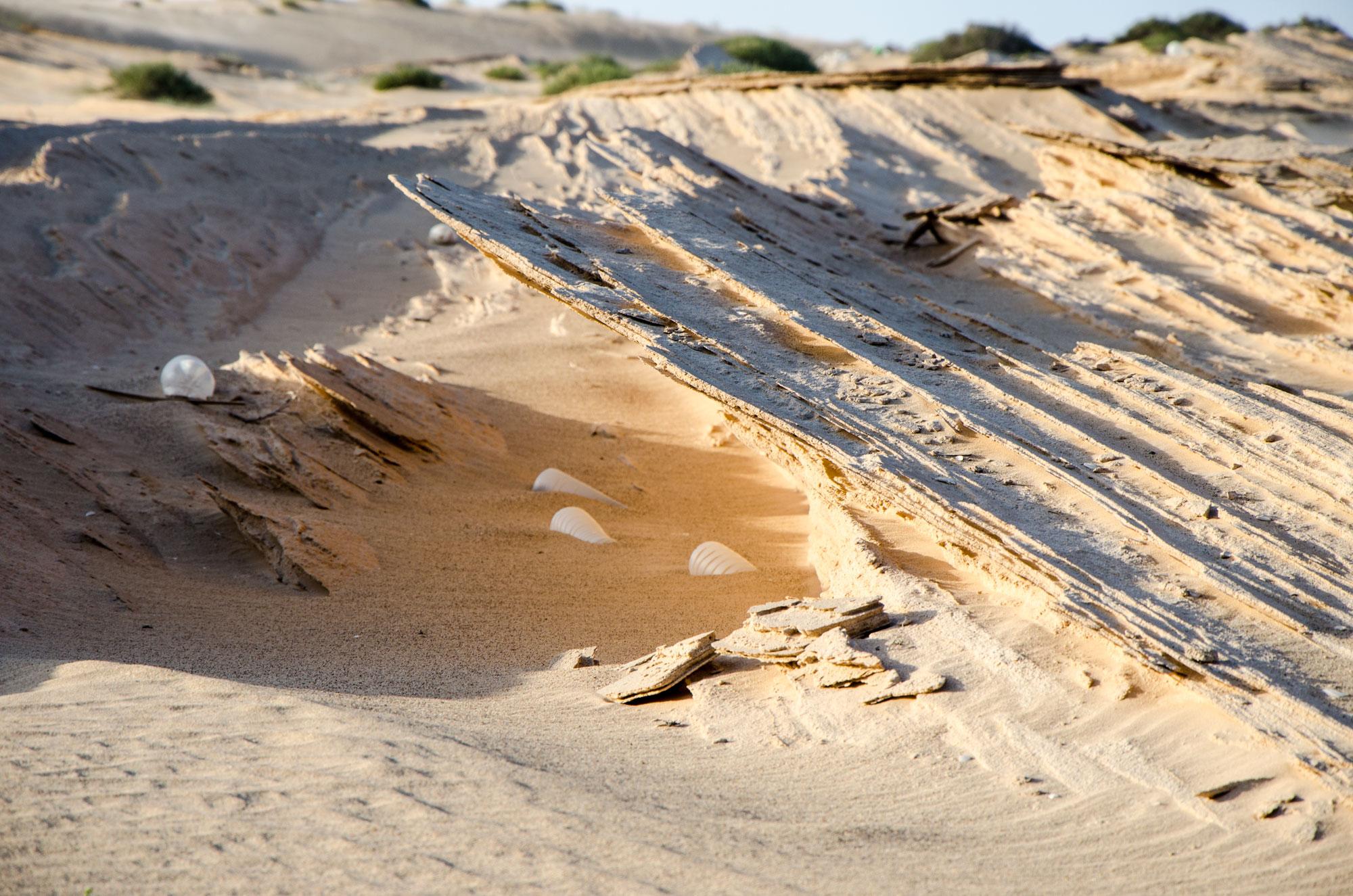 Meer und Wind haben den Sandstein dort zu ganz dünnen Schichten geformt. Foto: Lothar Ruttner