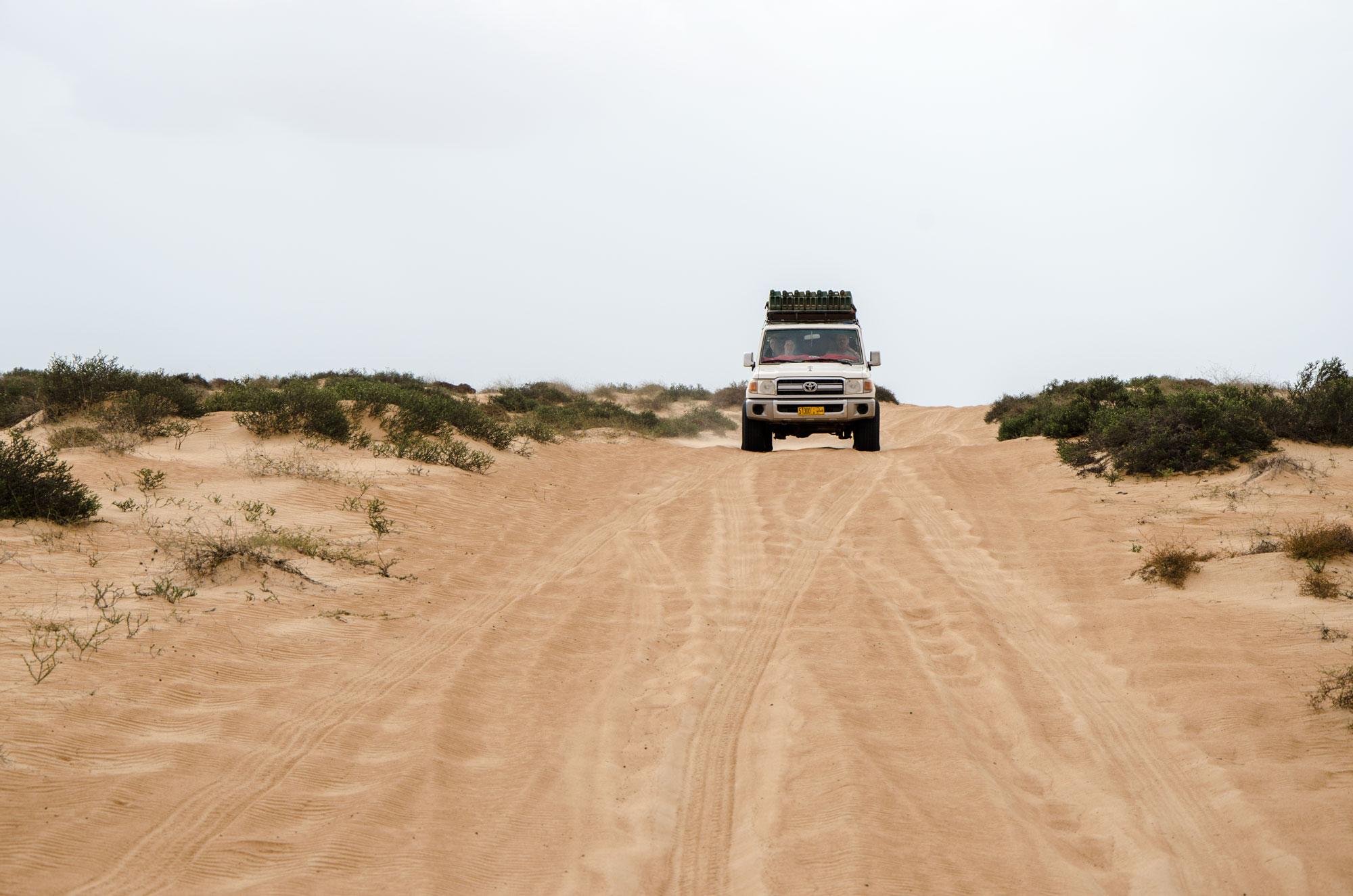 Vom Meer aus geht es weiter in die Wahiba Wüste. Dort erwartet uns ein ganz anderes Wüstenbild – und sogar ein paar Regentropfen. Foto: Lothar Ruttner