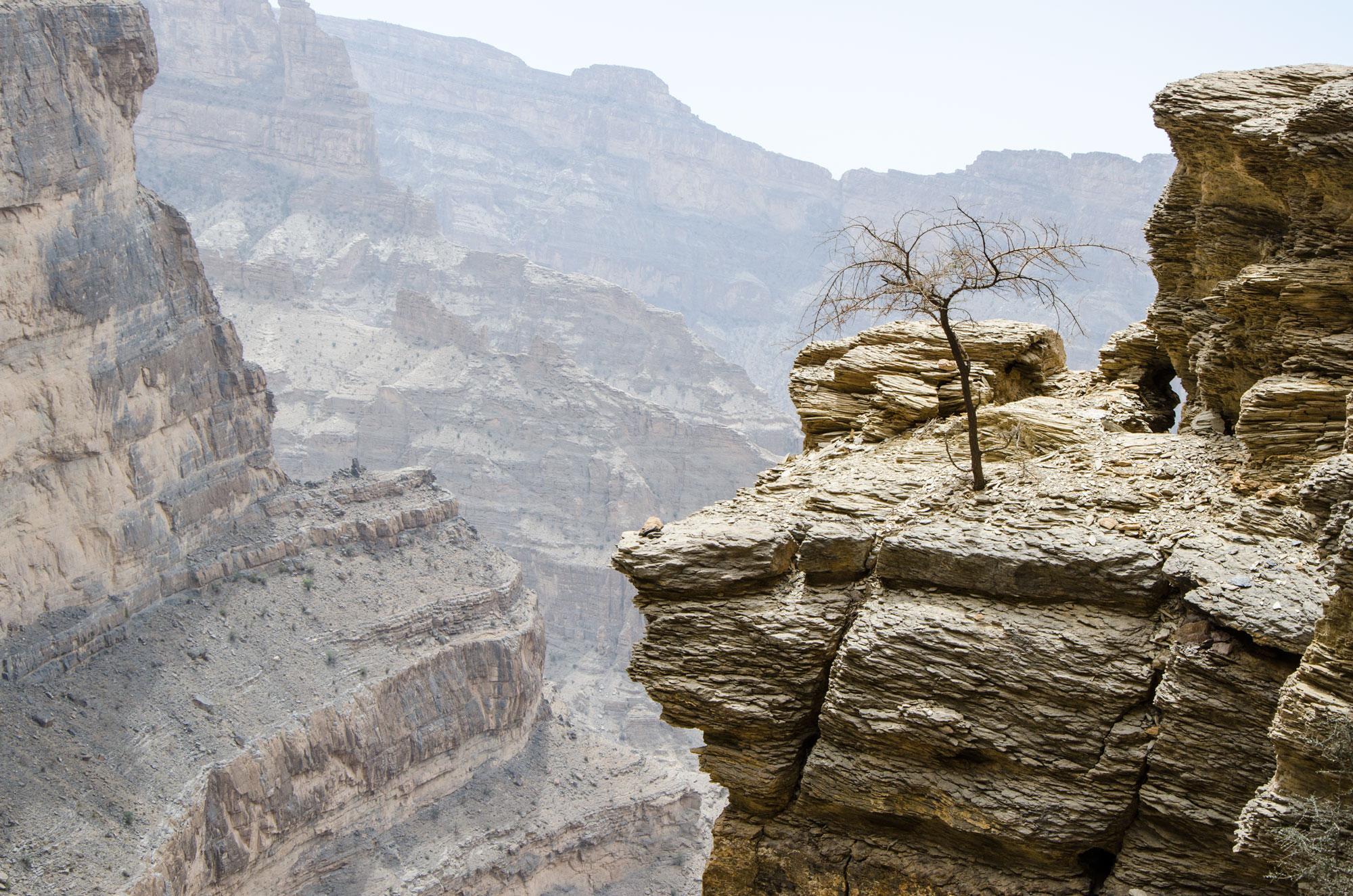 Entlang der Wände führt ein Wanderweg mit atemberaubenden Aussichten. Foto: Lothar Ruttner