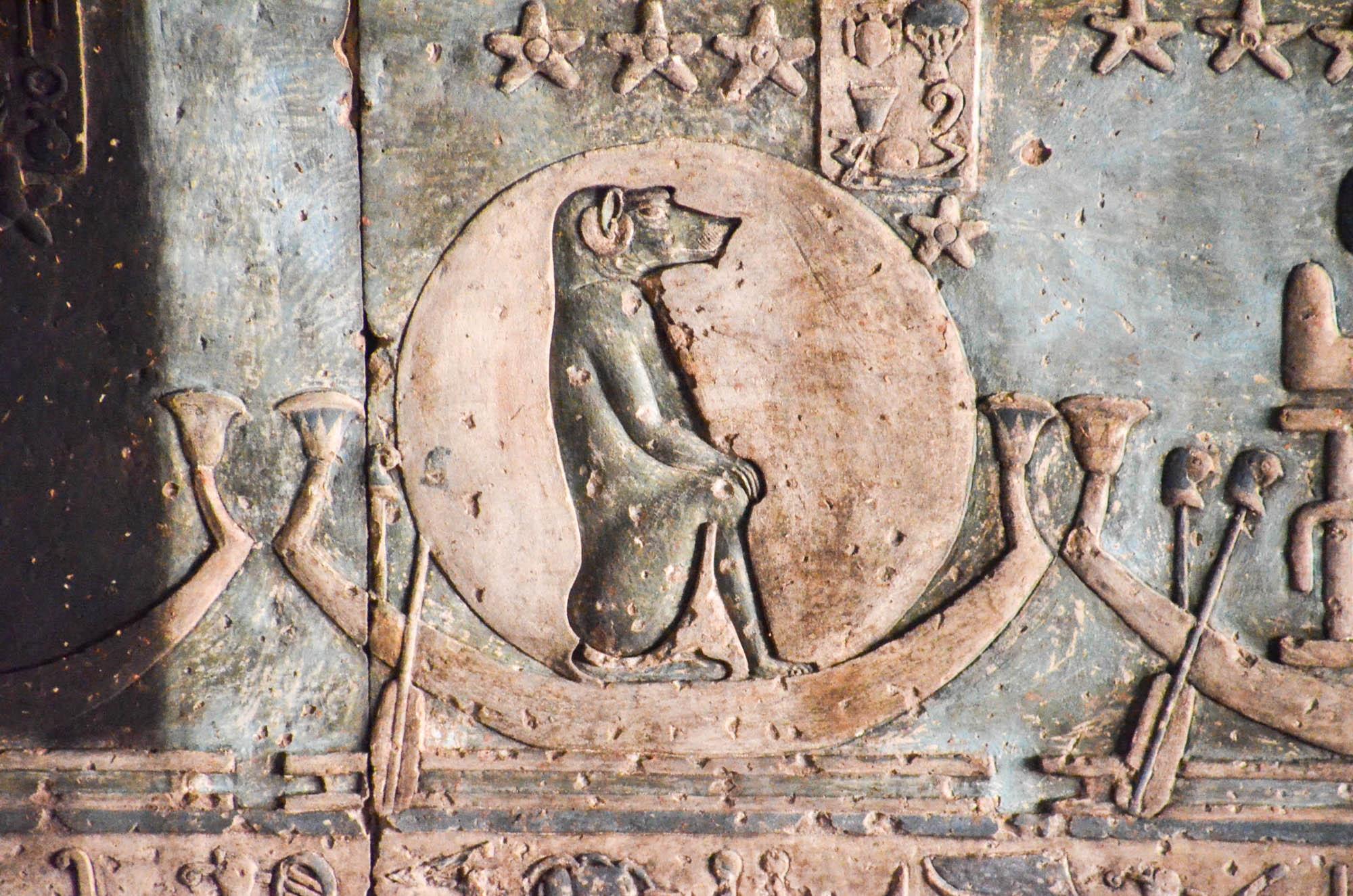 Der Mondgott Thot, zuständig für Weisheit, der Magie, der Wissenschaft und das Schreiben, wird oft als Pavian dargestellt. Hier, in einem Deckenrelief in Dendera, reist er in einer Barke durch den Nachthimmel. Foto: Matthieu Götz